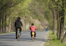 Vagando in primavera Fotografia Stock Libera da Diritti