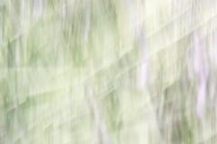 Vage abstracte achtergrond Groene purper en wit royalty-vrije stock foto's
