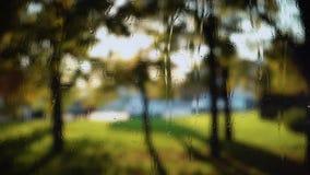 Vage achtergrond met verse groene bladeren die in wind achter regenachtig venster golven stock video