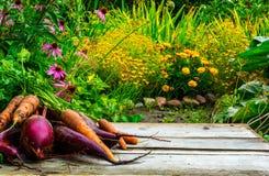 Vage achtergrond van de herfsttuin en houten bureau met biet en wortel Stock Foto