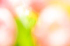 Vage achtergrond van roze en groene kleuren vector illustratie