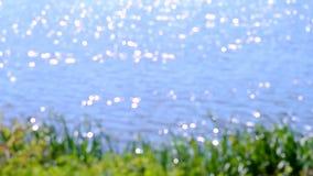 Vage de zon van de waterspiegelglans stock footage
