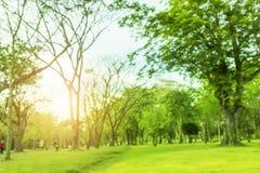 Vage foto Mooie weide in het park met ochtendhemel royalty-vrije stock foto