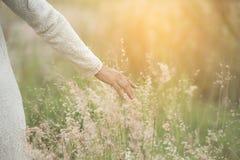 Vage hand van jonge mooie vrouw wat betreft tarwearen met haar hand bij zonsondergang royalty-vrije stock afbeelding