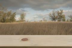 Vage heideachtergrond met lege houten Stock Foto