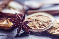 Vage macroanijsplant en droge sinaasappel Stock Foto