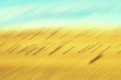 Vage motie medow, abstract aardachtergrond of behang Stock Afbeelding