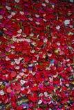 A vagem bonita colorida trava como um sinal do amor fotografia de stock