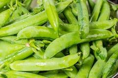 Vagens de ervilha verde frescas em uma bacia Imagens de Stock Royalty Free