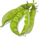 Vagens de ervilhas verdes Fotografia de Stock Royalty Free