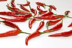Vagens frescas de pimentas vermelhas no fundo branco, fim acima Fotografia de Stock