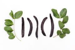 Vagens orgânicas maduras do fruto da alfarroba e folhas verdes da árvore de locustídeo no fundo branco Alternativa saudável ao ca fotos de stock