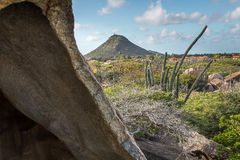 Vagga bildande, Aruba Royaltyfria Bilder