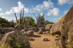 Vagga bildande, Aruba Royaltyfri Fotografi