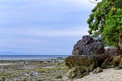 Vagga bildande i havet Royaltyfri Fotografi