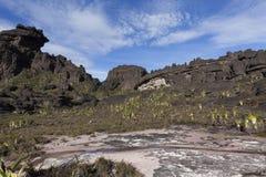 Vagga bildande, monteringen Roraima arkivbild