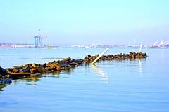 Vagga bryggan i hamn och bransch Royaltyfria Foton