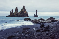Vagga fiska med drag i tår Reynisdrangar klippor royaltyfri fotografi