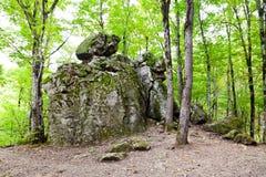 Vagga jäkelfingret i Kaukasus berg Arkivbilder