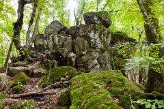 Vagga jäkelfingret i Kaukasus berg Arkivbild