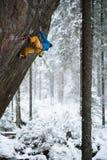 Vagga klättraren i härligt bergnaturlandskap Extrem vintersport royaltyfri bild
