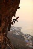 Vagga klättraren på solnedgången Arkivbild