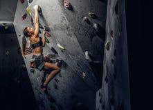 Vagga-klättring för sportswear för ung kvinna bärande övande på en vägg inomhus royaltyfri foto