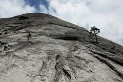 Vagga klättringen den gigantiska halva kupolen via ormdikestigning i Yo Arkivfoton