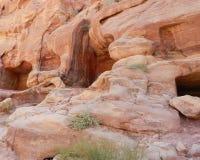 Vagga med nischer i Petra, Jordanien royaltyfri foto