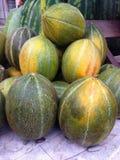 Vagga melon Fotografering för Bildbyråer