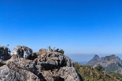 Vagga på överkanten av berget och härlig klar himmelbakgrund Royaltyfri Bild