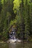 Vagga på den skogsbevuxna banken av floden royaltyfri fotografi