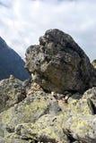 Vagga på den Zlomiskova dolinadalen Royaltyfri Fotografi
