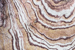 Vagga textur Royaltyfria Foton
