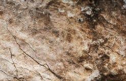 Vagga textur, den detaljerade strukturen av vaggar Royaltyfri Foto
