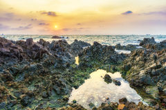 Vagga tips på den Jurassic kusten Arkivbilder