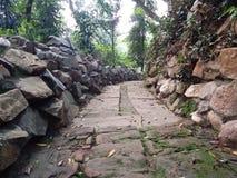 Vagga trädgården arkivfoto