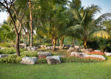 Vagga trädgården Arkivbild