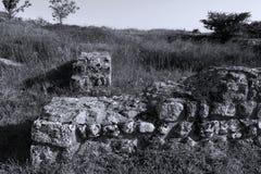 Vaggar av Adamclisi i Rumänien, närbildsikt royaltyfri fotografi