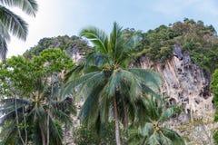 Vaggar den tropiska karsten för populärt lopp perfekt för att klättra, Krabi Arkivbild