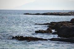 vaggar havet Fotografering för Bildbyråer