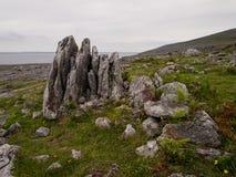 Vaggar i Burrenen i Irland Royaltyfri Bild