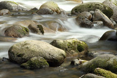 Vaggar i en flod Royaltyfri Fotografi