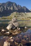 Vaggar i en stillsam bergsjö royaltyfria bilder
