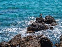 Vaggar i havet, Kroatien Fotografering för Bildbyråer