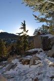 Vaggar med snö Fotografering för Bildbyråer
