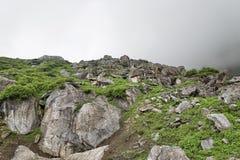Vaggar och gröna växter i berg Royaltyfri Bild