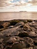 Vaggar och havet på Colonia Arkivfoto
