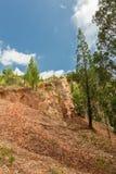 Vaggar och klippor Kakamega Forest Kenya Arkivfoto