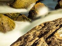 Vaggar och silkeslent slätt vatten fotografering för bildbyråer